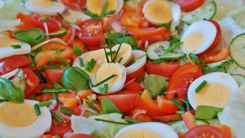 restaurantes vegetarinos e veganos na Grande Vitória